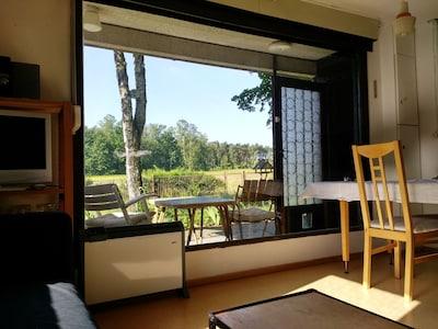 Blick von der Couch in den Garten. Vögel und Eichhörnchen beobachten.