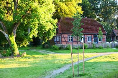 Tree Trek, Bad Bevensen, Basse-Saxe, Allemagne