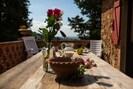 Blume, Blumentopf, Eigentum, Pflanze, Zuhause, Haus, Zimmer, Tabelle, Garten, Gebäude
