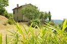 Pflanze, Himmel, Pflanzengemeinschaft, Gebäude, Fenster, Baum, Natürliche Landschaft, Grundstueck, Vegetation, Haus