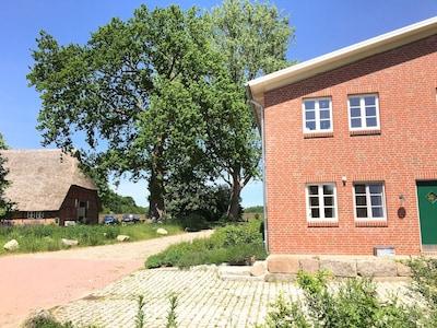 Grove, Schleswig-Holstein, Duitsland