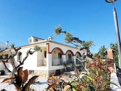 Haus Vorder- und Seitenansicht