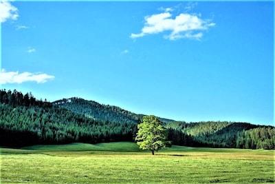 Schwarzau im Gebirge, Zuid-Oostenrijk, Oostenrijk