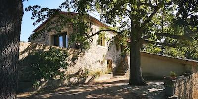 Colombier-le-Vieux, Ardèche (département), France
