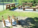 Plant, Wood, Outdoor Furniture, Grass, Fawn, Lawn Ornament, Groundcover, Gas, Leisure, Tree