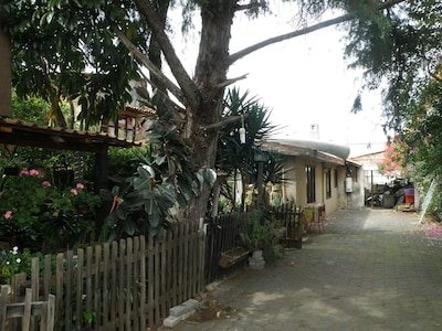 Morelia, Michoacan, Mexico (MLM-General Francisco Mujica Intl.)