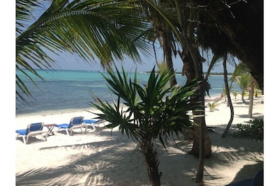 Suntan on a chair or hammock. Swim & snorkel the coral reef with rays & turtles
