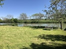 Field by the Pedernales River