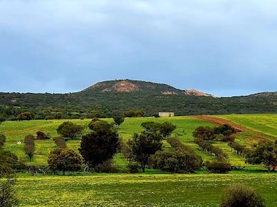 Bowes, Western Australia, Australien