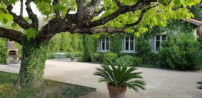 Sarrians, Vaucluse (département), France