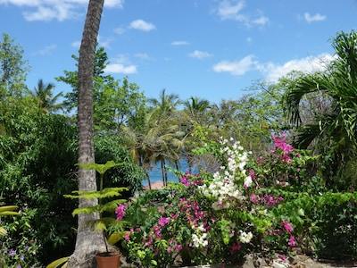 Centre Spa et Massage du Parc aux Orchidees, Pointe-Noire, Basse-Terre Island, Guadeloupe