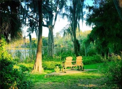 Westfield Citrus Park, Tampa, Florida, Verenigde Staten