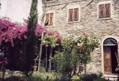 Casa Pelin