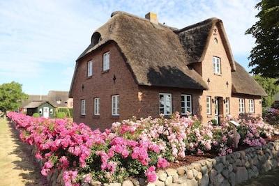Kleindunsum, Dunsum, Schleswig-Holstein, Germany