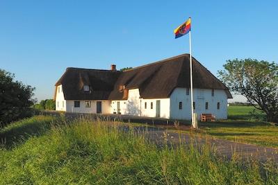 Osterdeich, Emmelsbüll-Horsbüll, Neugalmsbüll, Schleswig-Holstein, Deutschland
