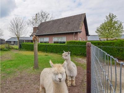 Vorstenbosch, North Brabant, Netherlands