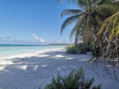 Rangiroa, Îles Tuamotu-Gambier, Polynésie française