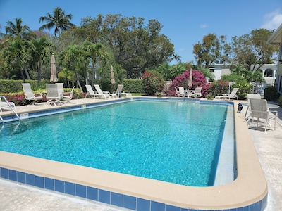 Refreshing pool, luscious garden  and grounds are just steps out the door.