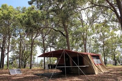 Burrum Coast National Park, Woodgate, Queensland, Australië