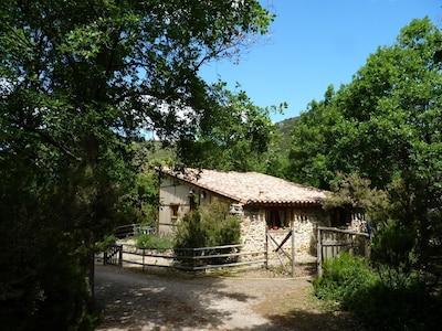 Terms Castle, Termes, Aude, France