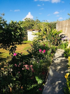 Awhitu, Auckland Region, Neuseeland