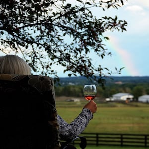A Cool Place for Your Pod to relax and see horses and rainbows in the country