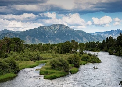Snake River with Mount Baldy in the background