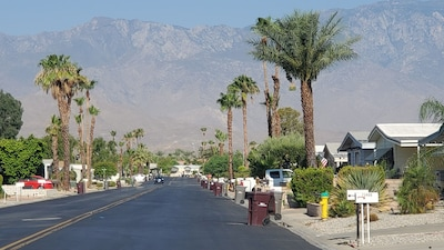 Neighborhood street view.