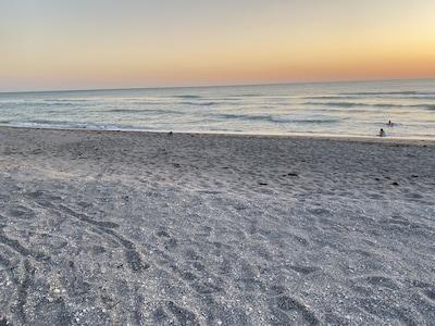 Venise, Floride, États-Unis d'Amérique