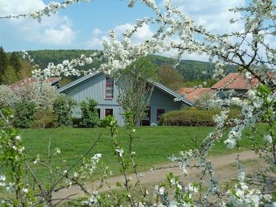 Perlsee, Waldmünchen, Bayern, Deutschland
