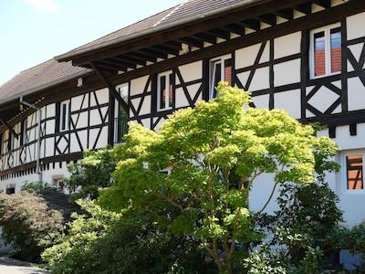 Truchtersheim, Bas-Rhin, France